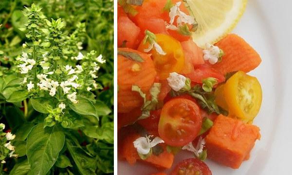 Cocina con flores de albahaca