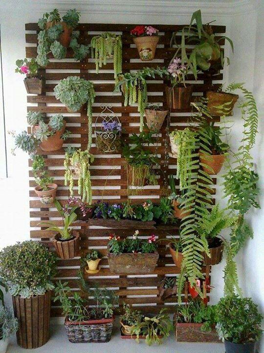 Jardín vertical con macetas colgantes