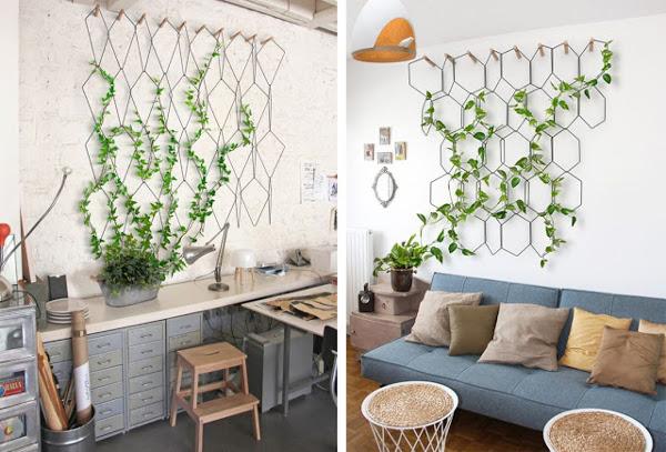 Idea para colgar plantas de interior