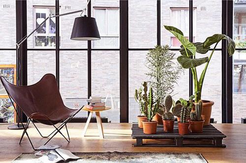 Soporte para las plantas hecho con un palet