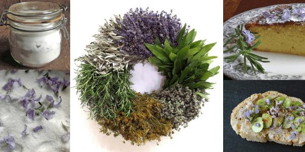 Flores de romero decoraciones y recetas de cocina