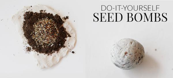 Manualidades con semillas bombas para plantar
