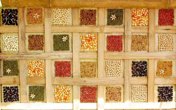 Manualidades con semillas paneles decorativos