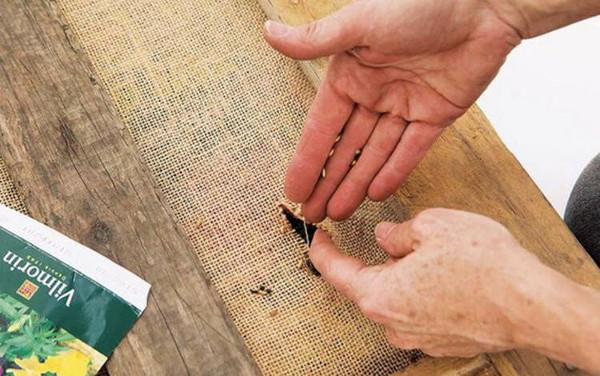 Cortar la tela arpillera
