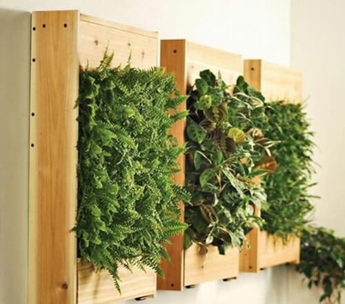 Jardines verticales con palets de madera para interiores