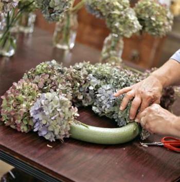 Haciendo una corona de hortensias