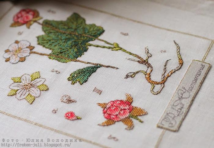 Manualidades botánicas