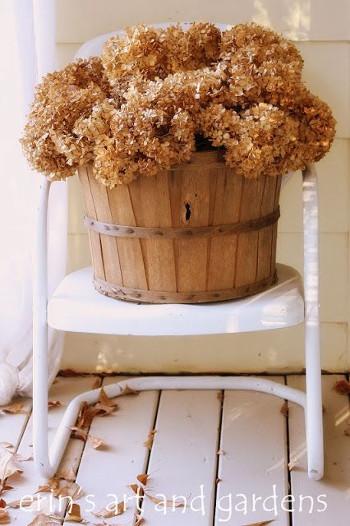 Secar hortensias para decorar